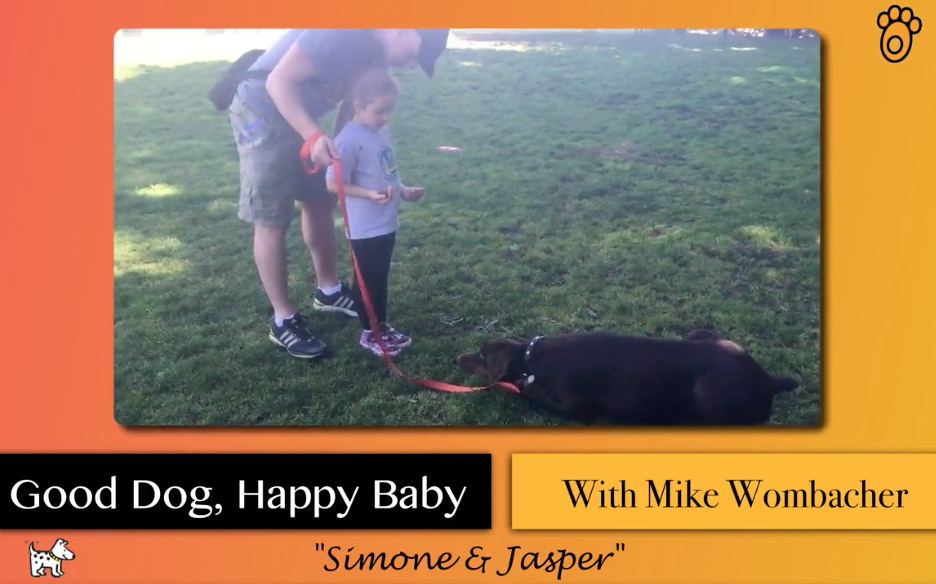 (VIDEO) Exercises To Change The Relationship Between Your Dog and Child