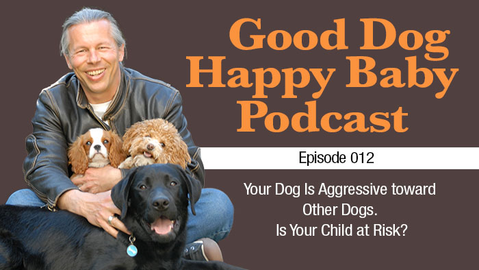 012: Your Dog Is Aggressive towards other Dogs. Is Your Child at Risk?