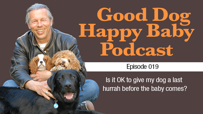 019: Is It OK To Give My Dog a Last Hurrah Before the Baby Comes?